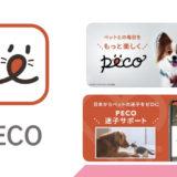 犬・猫のかわいい動画や迷子サポートまで!ペットのための総合メディアアプリ【PECO(ペコ)】