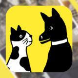 飼ってる犬・猫も、街中で見かけた子も!犬・猫写真共有アプリ【ドコノコ】