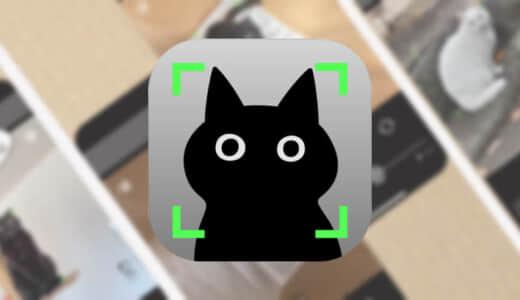 【黒猫カメラ】黒猫の写真を撮ることに特化したカメラアプリ!